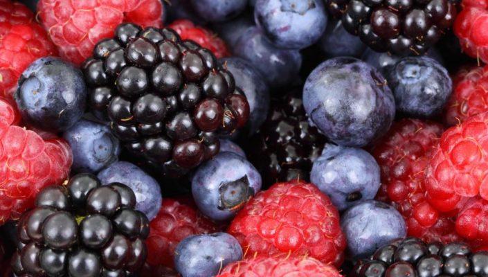 Voedingsadvies Active4health